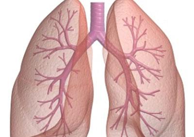 Кабинет по белодробни болести